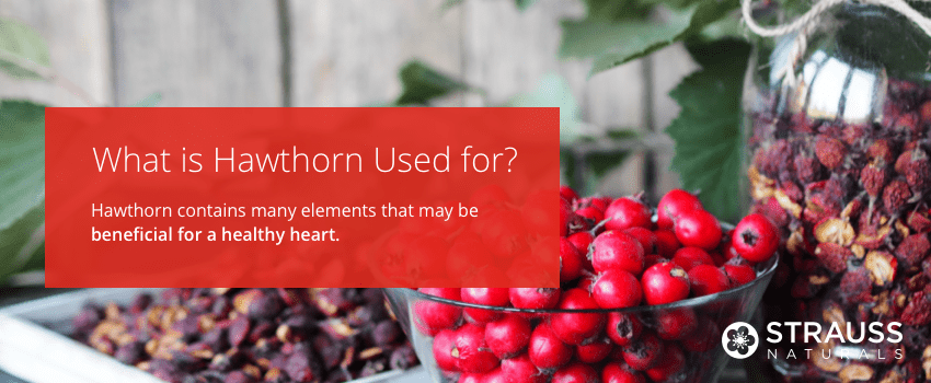 What is Hawthorn Used for?