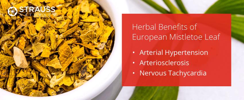 Herbal Benefits of European Mistletoe Leaf