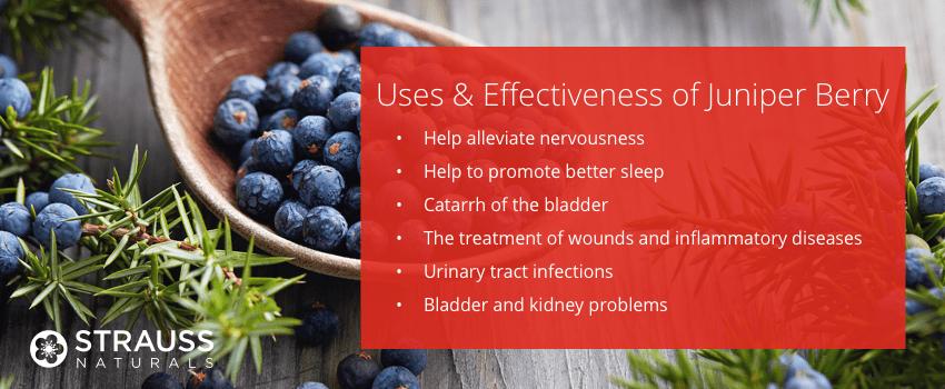 Uses & Effectiveness of Juniper Berry